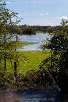0689-wimborne_floods_dorset_2012