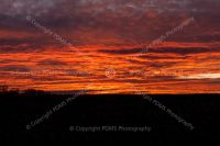 8468-sunset